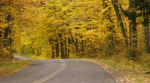 Read full article: Wisconsin's Fall Colors Brighter Up North