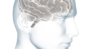 Read full article: Alzheimer's Screenings This Week