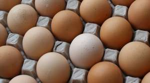 Read full article: Egg Prices Likely To Even Out Quickly
