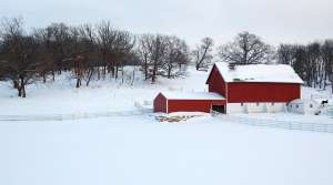 Read full article: The Rest Of Us Might Grumble, But Farmers Appreciate Late-Winter Snowfall