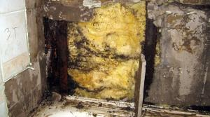 Read full article: New Bill Would Alter Asbestos Litigation Process