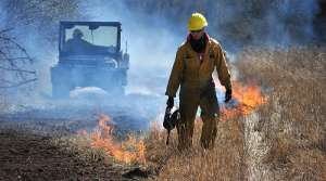 Read full article: Cool, Wet Spring Means Less Time For Necessary Prairie Burns