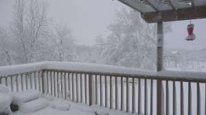 Read full article: Ongoing Snowstorm Causes Power Outages, Road Accidents