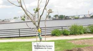 Read full article: Packers Plant Trees To Parry Pests