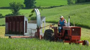 Read full article: Alfalfa Crop Damage Eats At Supply Of Animal Feed