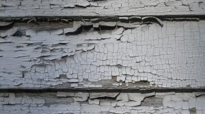 Read full article: Tort Lawyers Criticize Budget Provision On Lead Paint Lawsuits