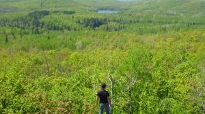 Read full article: Bad River Tribe Turns To Federal Government To Stop Mine