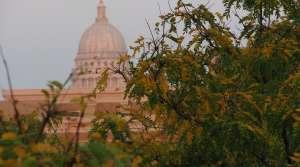 Read full article: Capitol Police Arrest Progressive Journalist
