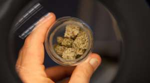 Read full article: State Lawmaker Introduces Plan To Legalize Marijuana In Wisconsin