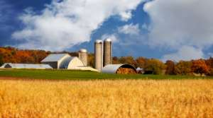 Read full article: Wisconsin Sees Five Year Decline In Number of Farms, Acres Of Farmland