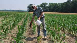 Read full article: Organic Agriculture Research Growing At Midwestern Universities