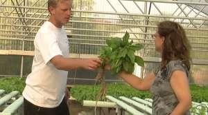 Read full article: Veterans In Green Bay Area Pursue Small-Scale Farming