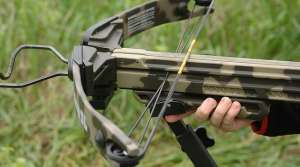 Read full article: DNR Board Approves Greater Allowance Of Crossbow Use For Deer Hunting