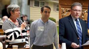 Read full article: 3 Democrats Square Off To Succeed Tim Cullen In Senate