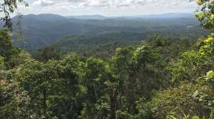 View from Skyrail coming down Macalister Range in Kuranda - Photo by Allen Rieland