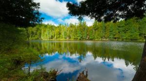 Chequamegon-NicoletNational Forest