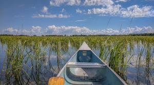 wild rice river boat