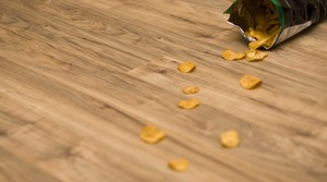 5 second rule, chips on floor
