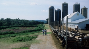 Read full article: Wisconsin Farms To Receive $11M From Federal Bailout Program