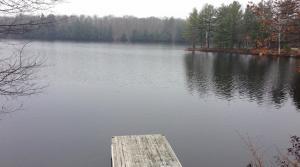 dock on lake in fall