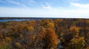 Fall in Peninsula