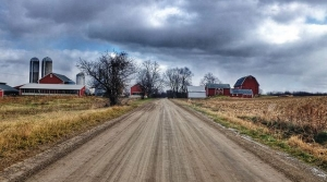 Read full article: Wisconsin Ranks Second In Organic Farms Nationwide