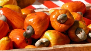 Read full article: Persimmon Arugula Salad