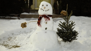 snowman in yard