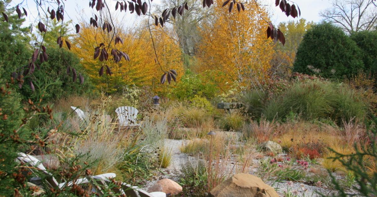 Gravel Gardens Are Low Maintenance, Drought Resistant, Horticulture Expert  Says | Wisconsin Public Radio