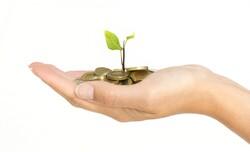 Nurturing money to grow. Investing. Starting a business. Saving money. Banking. Saving for college.... etc.