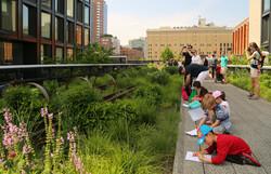 High Line, NYC