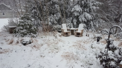 Two chairs in a winter garden.