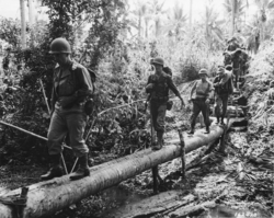 Wisconsin National Guard Soldiers, from the 32nd Division, cross a rudimentary log bridge in the South Pacific in 1942 during World War II.