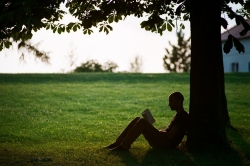 man reading under tree
