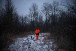 deer hunting, S.B. Tuska (CC-BY-NC-ND)