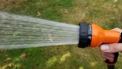 Sprayer at the end of gaarden hose.