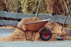 Wheelbarrow with mulch.