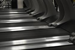 A row of treadmills