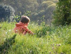 Child sitting in grass