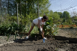 A woman works her garden in northern France.