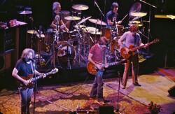 Grateful Dead live in concert