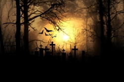Spooky graveyard with bats