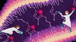 An illustration demonstrates a bacterial pathway for furan fatty acide synthesis filled with bright purple and pink colors and two animated women as helpers.