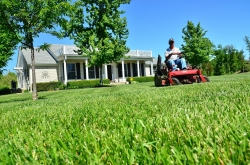 Cutting lawn on riding mower in front of house.