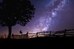 swing with night sky