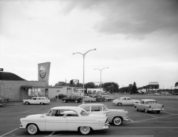 A  parking lot view of a strip mall in black and white featuring a Piggly Wiggly logo sign.