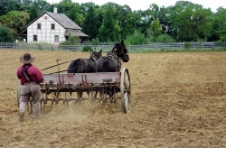Koepsell cultivator.