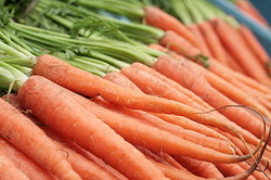 Carrots, image by Wikimedia Commons user Kander