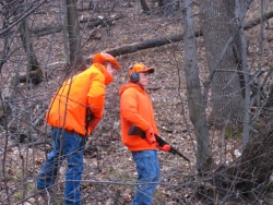 Two hunters wearing blaze orange and carrying guns in the woods