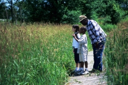 Young children learn about wetland ecology at Aldo Leopold Center
